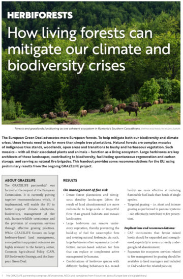 Publication: How living forests can mitigate our climate and biodiversity crises.