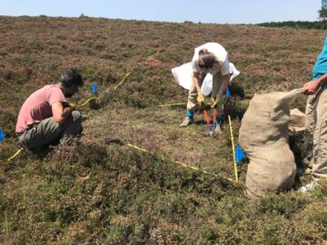 GrazeLIFE fieldwork